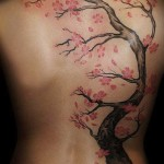 Cherry Blossom Tattoos 3 150x150 - 100's of Cherry Blossom Tattoo Design Ideas Pictures Gallery