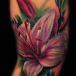 Lily Tattoo 4 150x150 - 100's of Lily Tattoo Design Ideas Pictures Gallery