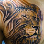 Lion Tribal Tattoo4 150x150 - 100's of Lion Tribal Tattoo Design Ideas Pictures Gallery