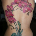 Orchid Tattoo 11 150x150 - 100's of Orchid Tattoo Design Ideas Pictures Gallery