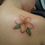 Plumeria Tattoo 11 150x150 - 100's of Plumeria Tattoo Design Ideas Pictures Gallery
