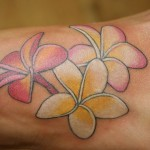 Plumeria Tattoo 3 150x150 - 100's of Plumeria Tattoo Design Ideas Pictures Gallery