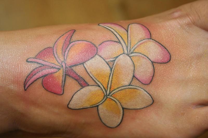 100 S Of Plumeria Tattoo Design Ideas Pictures Gallery