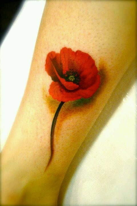100's of Poppy Tattoo Design Ideas Pictures Gallery
