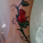 Rose Tattoo 4 150x150 - 100's of Rose Tattoo Design Ideas Pictures Gallery