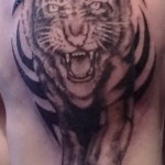 Tiger Tribal Tattoo5 150x150 - 100's of Tiger Tribal Tattoo Design Ideas Pictures Gallery