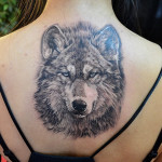 27 Wolf Tattoo 150x150 - Wolf Tattoos Design Ideas Pictures Gallery