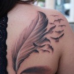 Feather tattoo 3 150x150 - Feather Tattoos Design Ideas Pictures Gallery