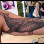 Hampback Whale Tattoo9 150x150 - Whale Tattoos Design Ideas Pictures Gallery