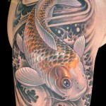 Koi Tattoos 10 150x150 - Koi Tattoos Design Ideas Pictures Gallery