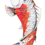 Koi Tattoos 14 150x150 - Koi Tattoos Design Ideas Pictures Gallery