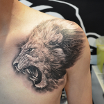 Lion Tattoos 1 150x150 - Lion Tattoos Design Ideas Pictures Gallery