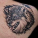 angry grey ink wolf tattoo on right back shoulder 150x150 - Wolf Tattoos Design Ideas Pictures Gallery