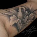 lilly tattoos 10 150x150 - Lilly Tattoos Design Ideas Pictures Gallery