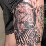 lion and zebra tattoo on leg 150x150 - Zebra Tattoos Design Ideas Pictures Gallery