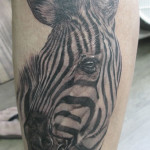 special tattoo image animal tattoo design collection 1410622946n84gk 150x150 - Zebra Tattoos Design Ideas Pictures Gallery
