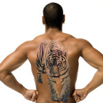 tiger tattoos 1 150x150 - Tiger Tattoos Design Ideas Pictures Gallery