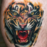 tiger tattoos 3 150x150 - Tiger Tattoos Design Ideas Pictures Gallery