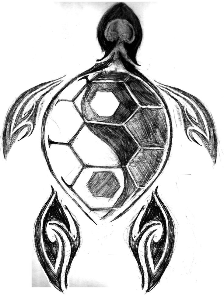 Turtle Tattoos Design Ideas Pictures Gallery