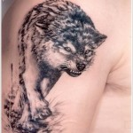 wolf tattoo designs 150x150 - Wolf Tattoos Design Ideas Pictures Gallery