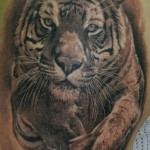Animal Tattoos 12 150x150 - 100's of Animal Tattoo Design Ideas Picture Gallery
