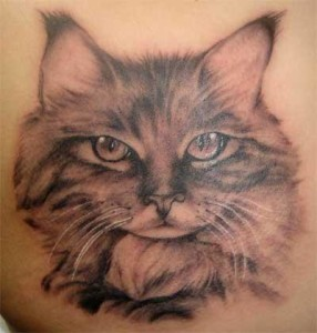 Cat Tattoos (10)