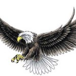 Eagle Tattoos 21 150x150 - 100's of Eagle Tattoo Design Ideas Picture Gallery