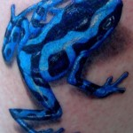 Frog Tattoos 7 150x150 - 100's of Frog Tattoo Design Ideas Picture Gallery