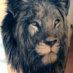 Lion Tattoos 4 150x150 - 100's of Lion Tattoo Design Ideas Picture Gallery