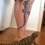 Lizard Tattoos 10 150x150 - 100's of Lizard Tattoo Design Ideas Picture Gallery