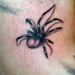 Spider Tattoo 150x150 - 100's of Spider Tattoo Design Ideas Picture Gallery