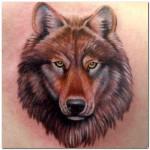 Wolf Tattoos (10)