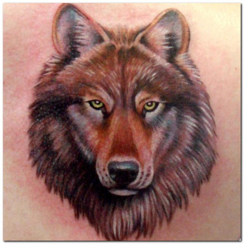 100's of Wolf Tattoo Design Ideas Picture Gallery