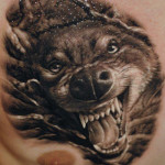 Wolf Tattoos 11 150x150 - 100's of Wolf Tattoo Design Ideas Picture Gallery