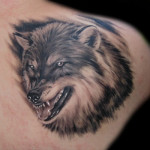 Wolf Tattoos 14 150x150 - 100's of Wolf Tattoo Design Ideas Picture Gallery