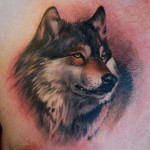 Wolf Tattoos 6 150x150 - 100's of Wolf Tattoo Design Ideas Picture Gallery