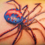 spider tattoo with color 150x150 - 100's of Spider Tattoo Design Ideas Picture Gallery